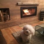 """""""Fireside Tilly"""""""