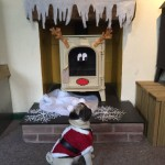 @StovaxGazco #STXMAS15 Merry Christmas from all of us – and Pugsy Malone