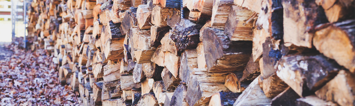 Guide to burning good quality wood and smokeless fuel following Government update