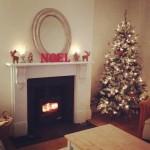 btaylorfaiers#christmastree #christmasinterior #woodburner #fire #noel