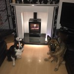 """Don't know who loves our new stove the most, me or the dogs!"""