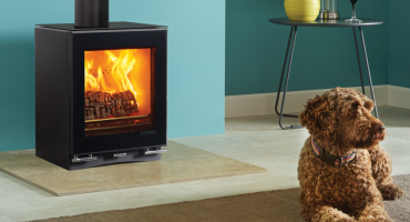 Introducing the newly enhanced Vision Wood Burning Stoves