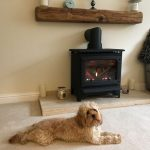 Approved by this family member !!