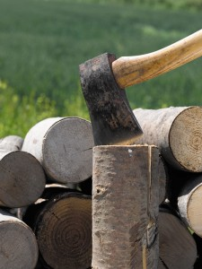 Ideally, logs should be no more than about 10cm in diameter