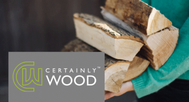 Why burn dry wood?