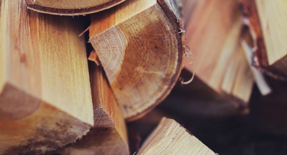 How to identify good firewood