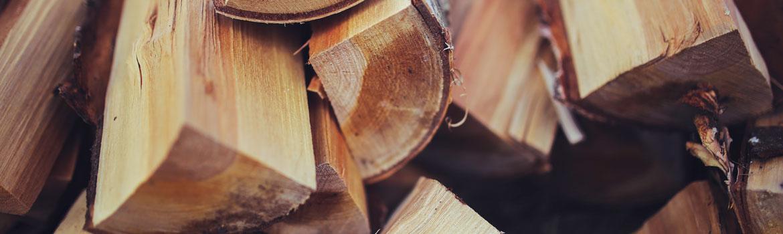 How to identify good firewood