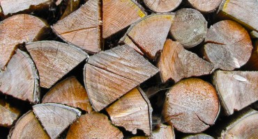 Ordering logs for your wood burning stove