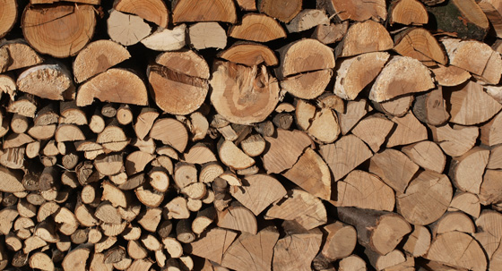 How to identify good firewood for your wood burning stove